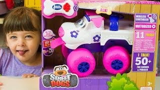 Dog Toys for Kids Street Dogs Roxi Funny Toy Truck Kinder Playtime