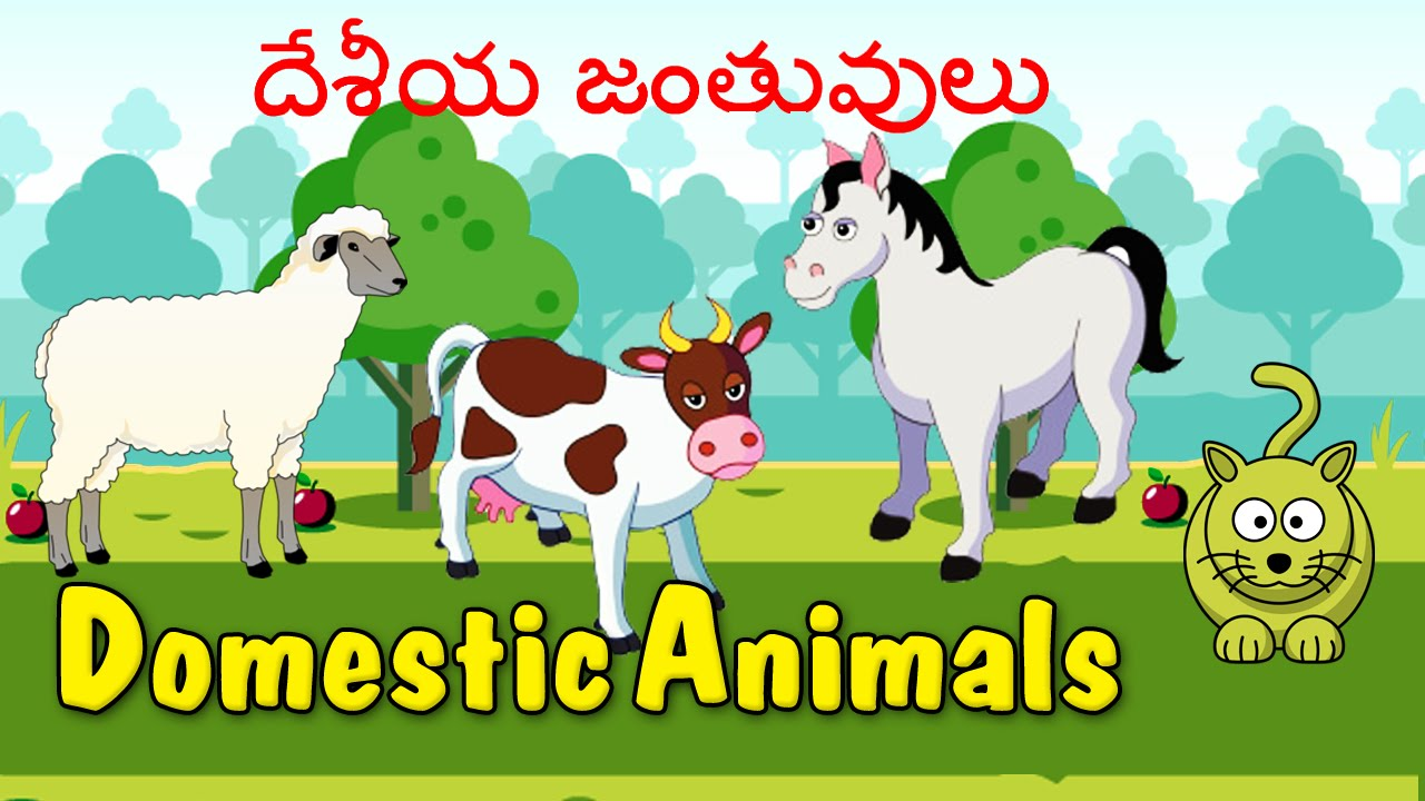 learn domestic animals animated video for kids telugu learn domestic animals animated video for kids telugu animation video for children