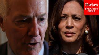 Cornyn Calls Out VP Kamala Harris Over Massive Surge Of Migrants At Del Rio