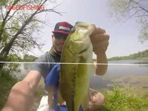 Bass Fishing Illinois Underwater