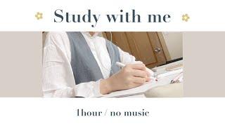 Study with me | 一緒に勉強しよう!(1hour・no music)🌿🧡