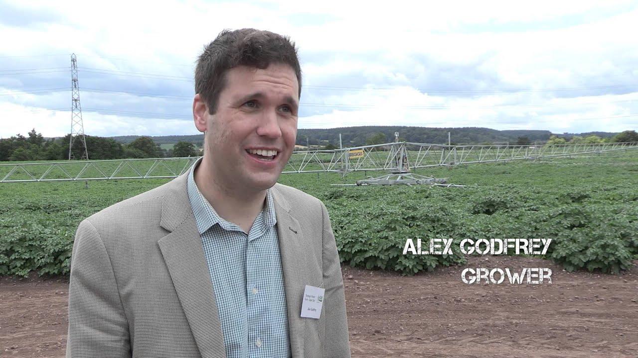 Image result for spot farm ahdb godfrey