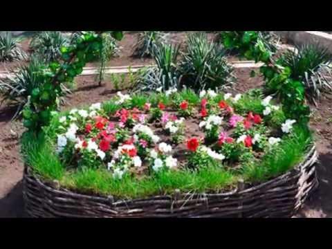 Как правильно устроить сад по фен шуй карте Багуа