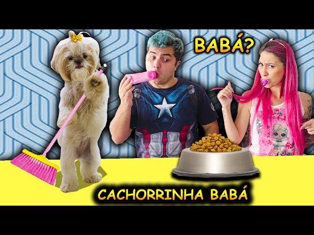 O CACHORRO QUE VIROU BABÁ DOS MALOUCOS POR 1 DIA ( Pretend to play nanny Dog )