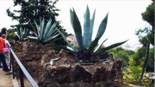 Наркоман Павлик в Испании 1 серия HD
