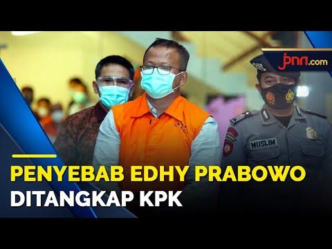 Menteri KKP Edhy Prabowo Ditangkap KPK, Begini Respons Jokowi