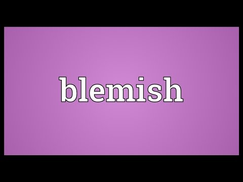 Blemish Meaning