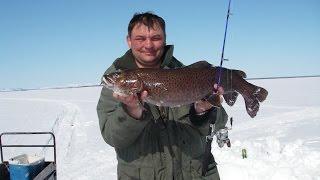 Рыбалка мечты на озере Мухтель
