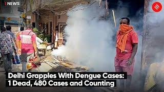 Delhi Grapples With Dengue Cases: 480 Cases and Counting | AAP Vs BJP Over Dengue Outbreak