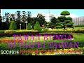 #sigmacreator #sigmacreatorcommunity Tkw Vlog#berhari Minggu Di Taman Bunga Taipei Taiwan