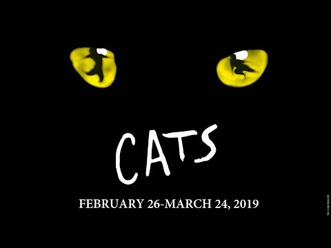 CATS |  February 26 - March 24, 2019