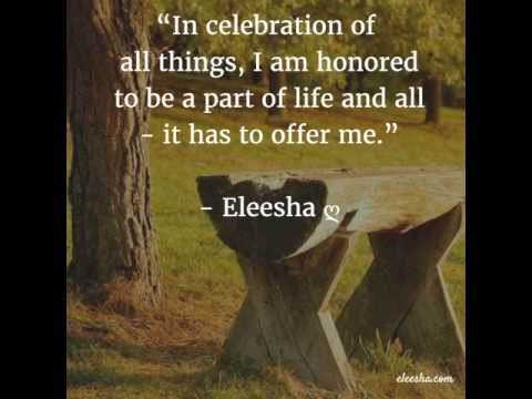 Celebration Of Life Quotes And Sayings Endearing Celebration Of Life  Daily Inspiration Quotes Affirmations