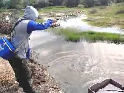 Best of fishing the snakehead fish
