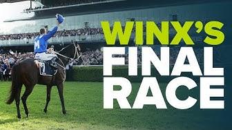A LEGEND RETIRES | Winx's Final Race
