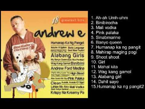 ANDREW E. GREATEST HITS COLLECTION