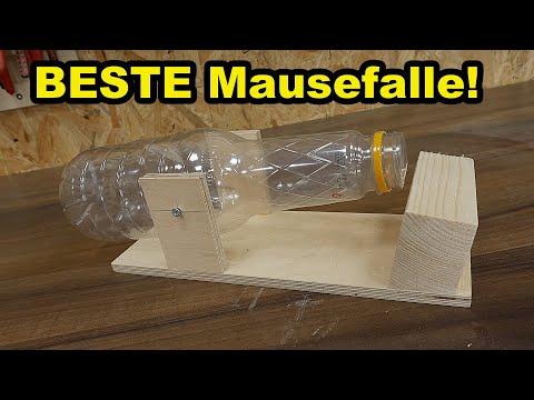 Lebend Mausefalle selber bauen 🐭 So fängst du jede Maus/Ratte!