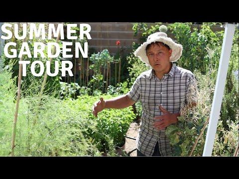 Summer Backyard Vegetable Garden Full Tour June