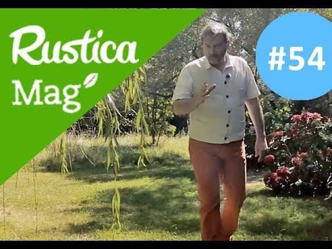 Eliminer Le Liseron Rusticamag 54 Saison 03 Episode 17 Youtube