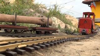 narrow gauge Diema rc tamiya scale
