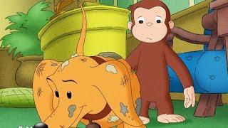 Curious George 🐵Hundley Jr 🐵Compilation🐵 HD 🐵 Cartoons For Children