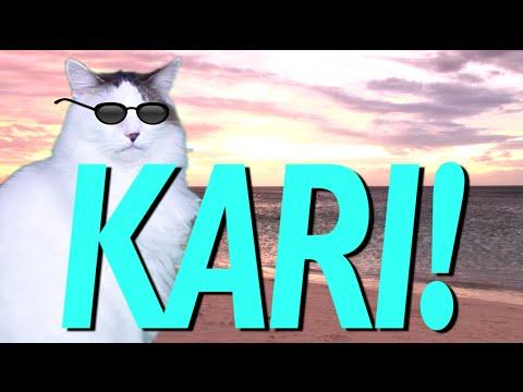 HAPPY BIRTHDAY KARI EPIC CAT Happy Birthday Song YouTube