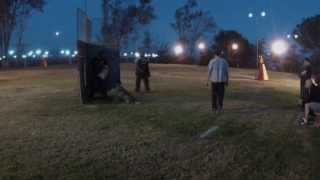 Coast Schutzhund Club Helper Seminar 1/25/2014