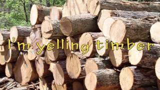 Pitbull - Timber Ft. Ke$ha (lyrics Video)