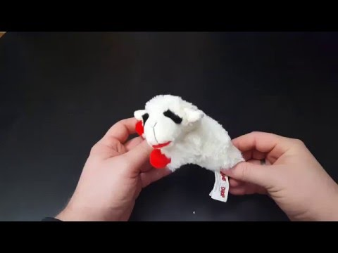dog-toy-review---multipet-lamb-chop-6-inch---initial-impressions