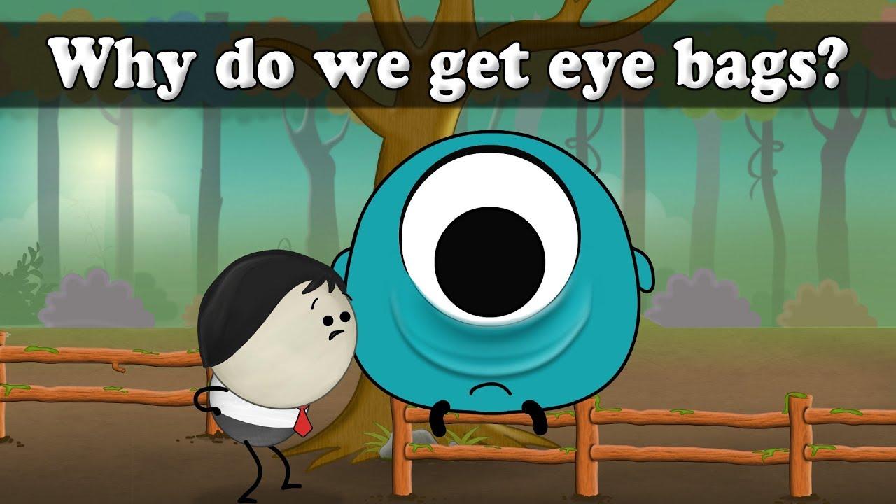 Why do we get eye bags? | #aumsum #kids #science - YouTube