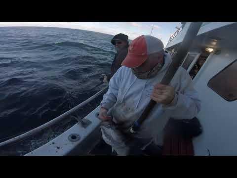 Eastman's Fishing Fleet - 2018 Pollock Trip