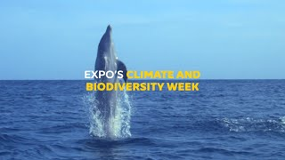 Climate and Biodiversity Week
