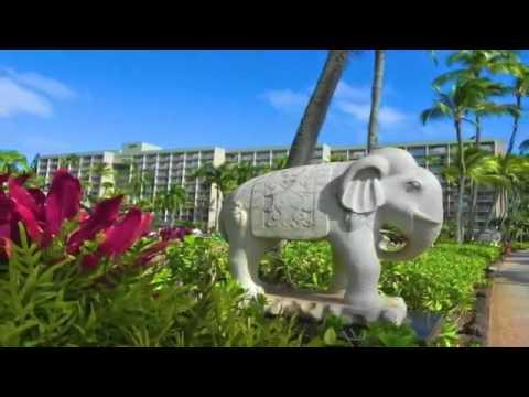 'and-i-love-you-so'-by-naki-ataman-in-nawiliwili,-kauai,-hawaii