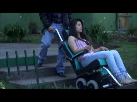 Silla salvaescaleras para personas con discapacidad apt for Sillas para escaleras minusvalidos