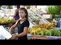 Tropical Fruits and exotic Girl in Pattaya, Thailand