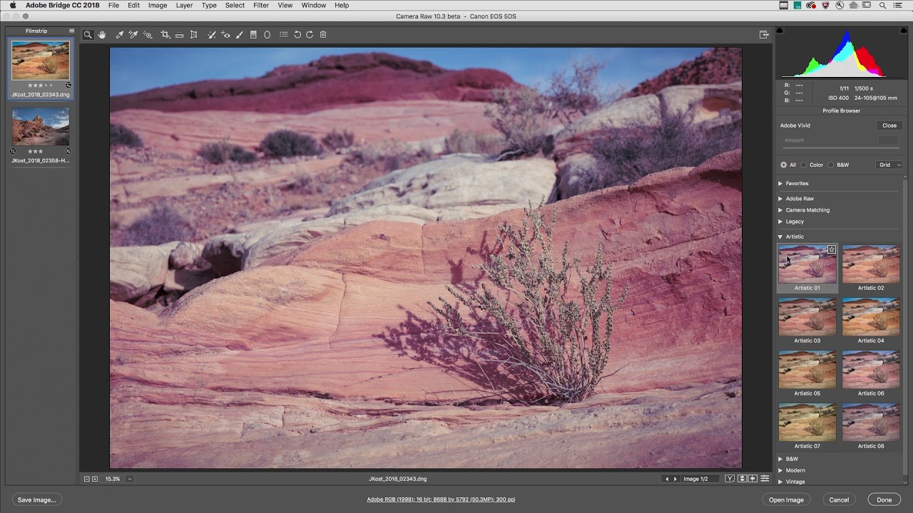 April Lightroom and Adobe Camera Raw Releases: New Profiles