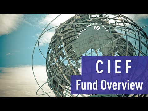 Overview of the Crescent International Equity Fund
