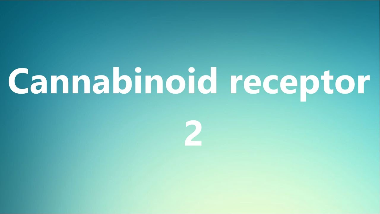 what are cannabinoid receptors used for
