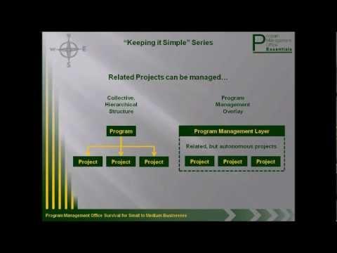 PMO Essentials Part 2 - Defining Program and Program Management