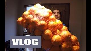 18 kilos de naranjas   M&L LIFE Vlog 71