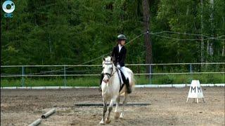 В Новосибирске стартовали соревнования по конному спорту среди инвалидов