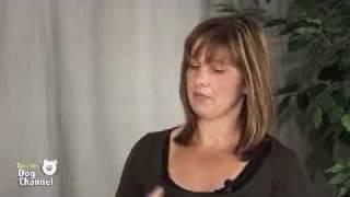 How To Address Common Dog Behavior Problems - Dogchannel.com