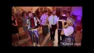 Ведущий на свадьбу в барнауле, Новосибирске Максим и Олеся КириленКо Летящей походкой