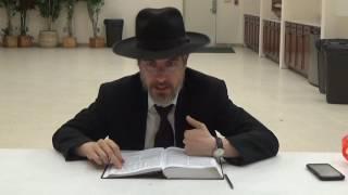 Урок 199 Йешаяу гл 7 ч 3 гл 8 ч 1