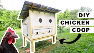 DIY Chicken Coop for 25 Chickens// How to Build 🐓