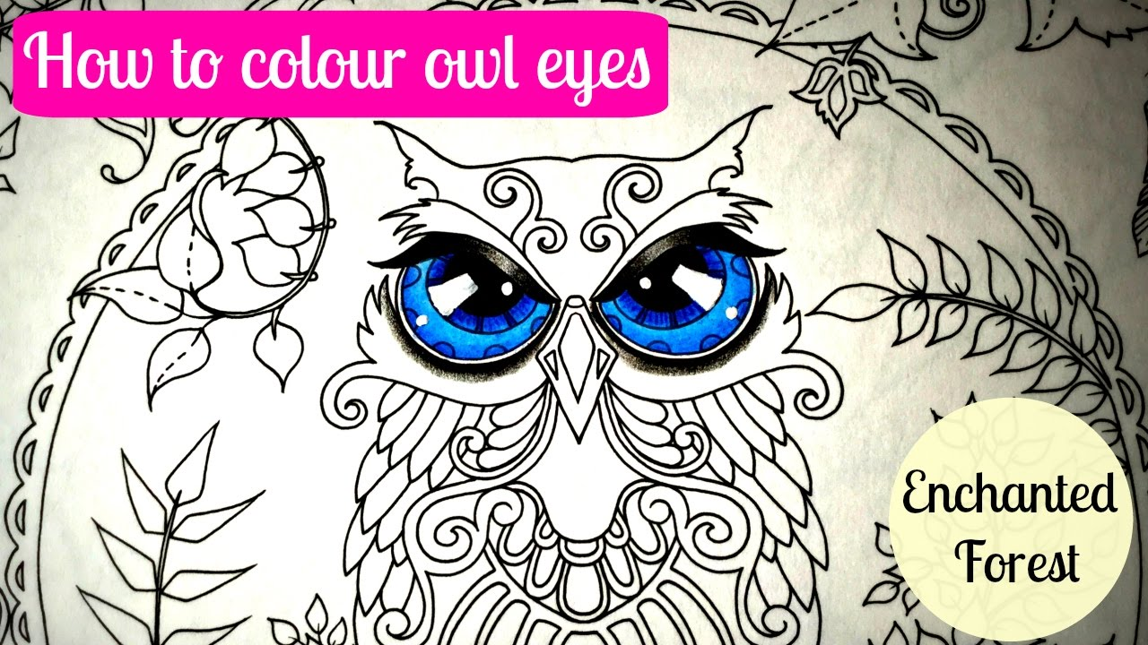 How To Colour OWL EYES