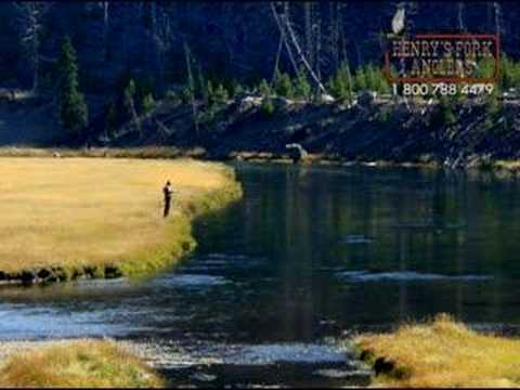 Fly Fishing Yellowstone Park with Henry's Fork Anglers