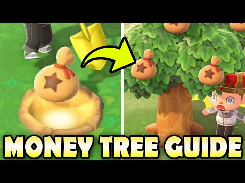 💰 The TRUTH About MONEY TREES + Myth Busting In Animal Crossing New Horizons