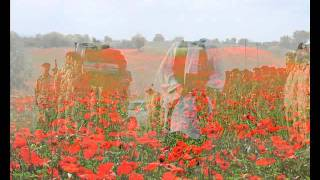 Remembrance Day Video.wmv