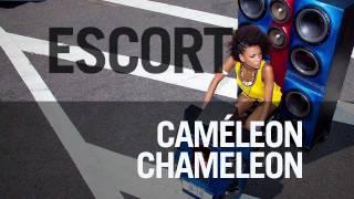 Play Caméleon Chameleon