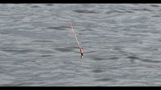 Рыбалка на поплавок в феврале март 2020 Ловим Плотву